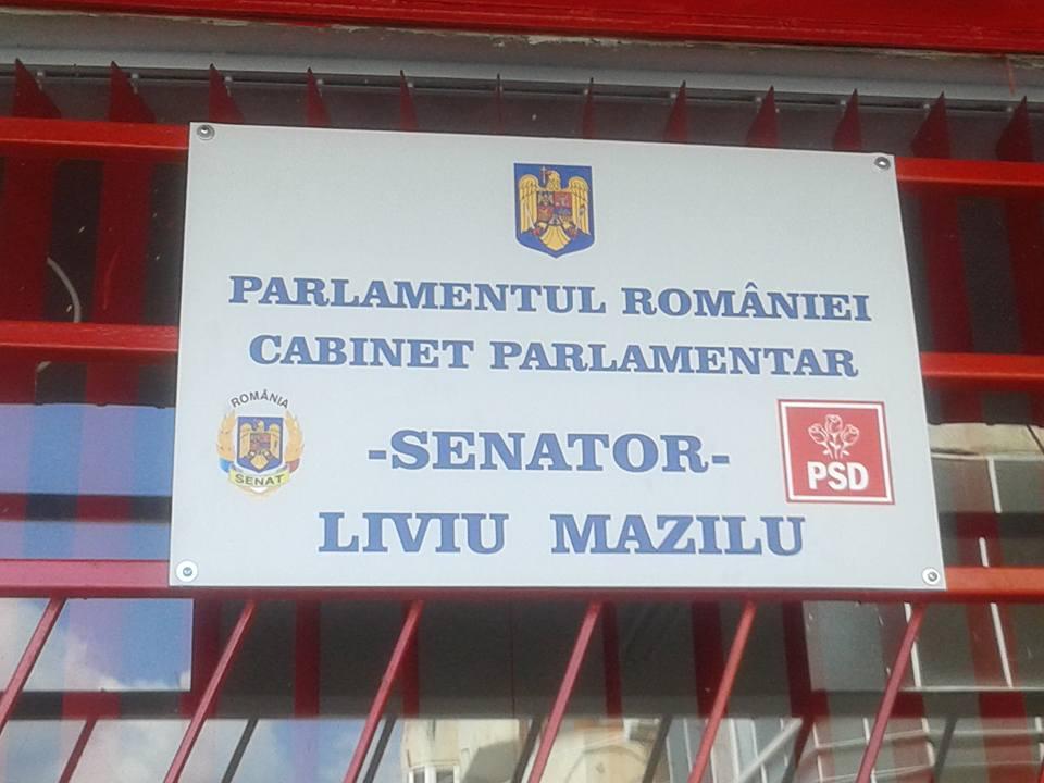 Liviu_Mazilu_cab_sen2