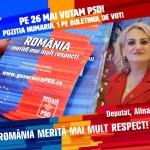 """Deputata Alina Teiş, comunicat de presă: """"Salarii mai mari pentru români """""""