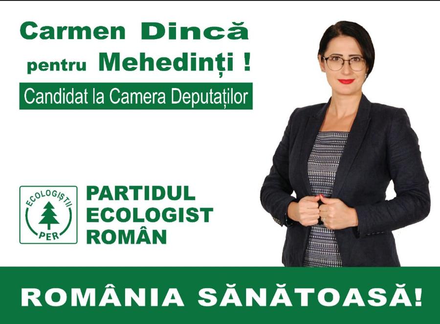 Carmen_Dinca_candidat