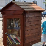 Ce finalitate practică au bibliotecile libere din Severin? Poate înlocui cartea telefonul din timpul liber în spațiul public al cetățeanului?